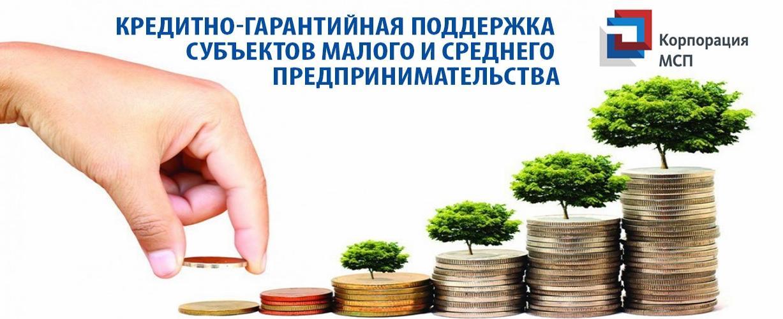 Кредитно-гарантийная поддержка субъектов малого и среднего предпринимательства